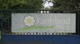 Banke rasprodaju ''Farmland''