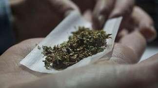 Legalizovano tržište marihuane u SAD koštaće 25 milijardi dolara do 2025. godine