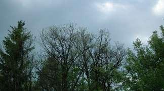 Na istoku Srpske kiša, u ostalim predjelima promjenljivo