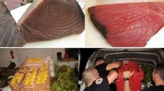U evropskim prodavnicama pronađena obojena tuna, lažno mlijeko i otrovan jogurt