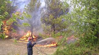 Izgorio 1,5 hektar šume kod Foče