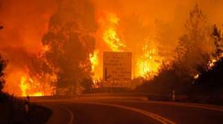 Veliki šumski požar u Portugaliji, na terenu 1.000 vatrogasaca i 327 vozila