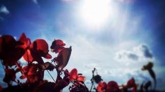 Toplo i sunčano vrijeme se nastavlja, danas do 36°C
