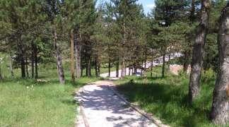 Trim staza na Talinama: Raj za sportiste i ljubitelje prirode