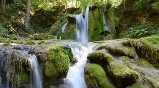 Izvor rijeke Miljacke fascinira čistoćom i netaknutom prirodom